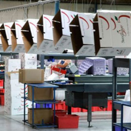 How Printing and Packaging Consultants help to start a career after break?